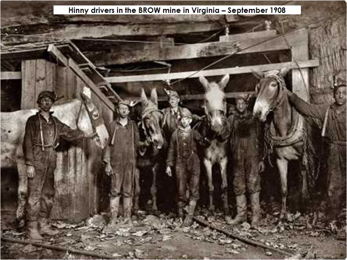 Mine photo Hinny drivers in the BROW mine in Virginia – September 1908.jpg