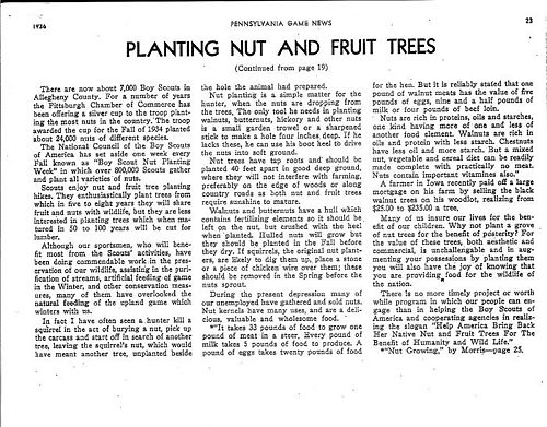 John m phillips planting nut and fruit trees 2.jpg